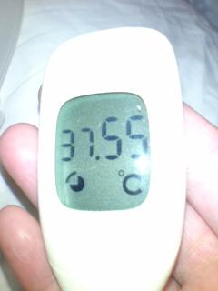 微熱のようです